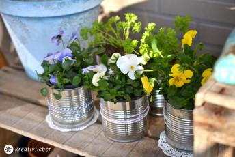 DIY: Blumentöpfe aus Konservendosen