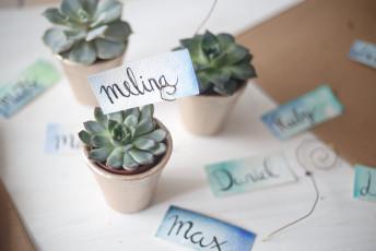 DIY Hochzeitsgastgeschenke mit Sukkulenten