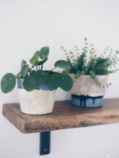 DIY Blumentöpfe mit Steinoptik