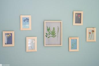 DIY Gallerywall mit getrockneten Blüten