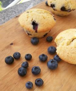 blaubeer-frischkäse-muffins