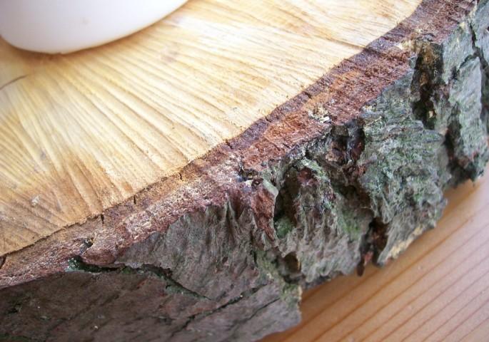 Holzrinde Adventskranz
