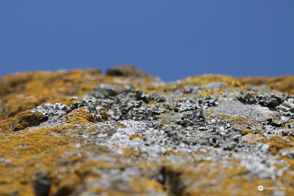 stein in newgrange