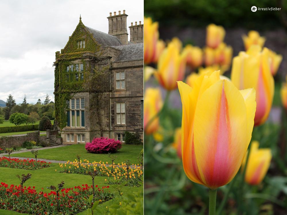 Muckross House und Garten