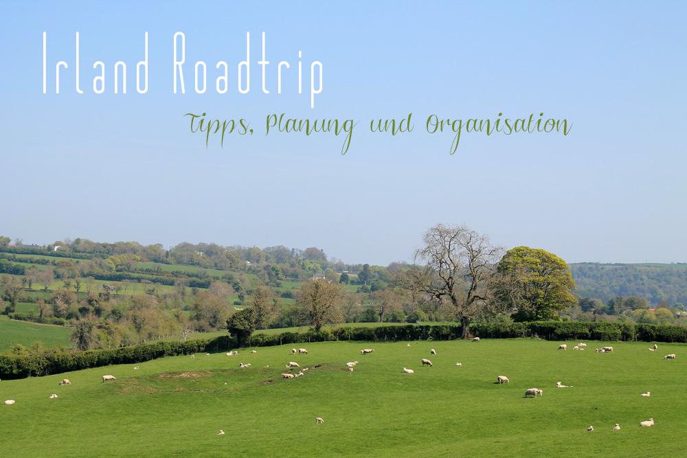 Irland Roadtrip Tipps Planung und Organisation