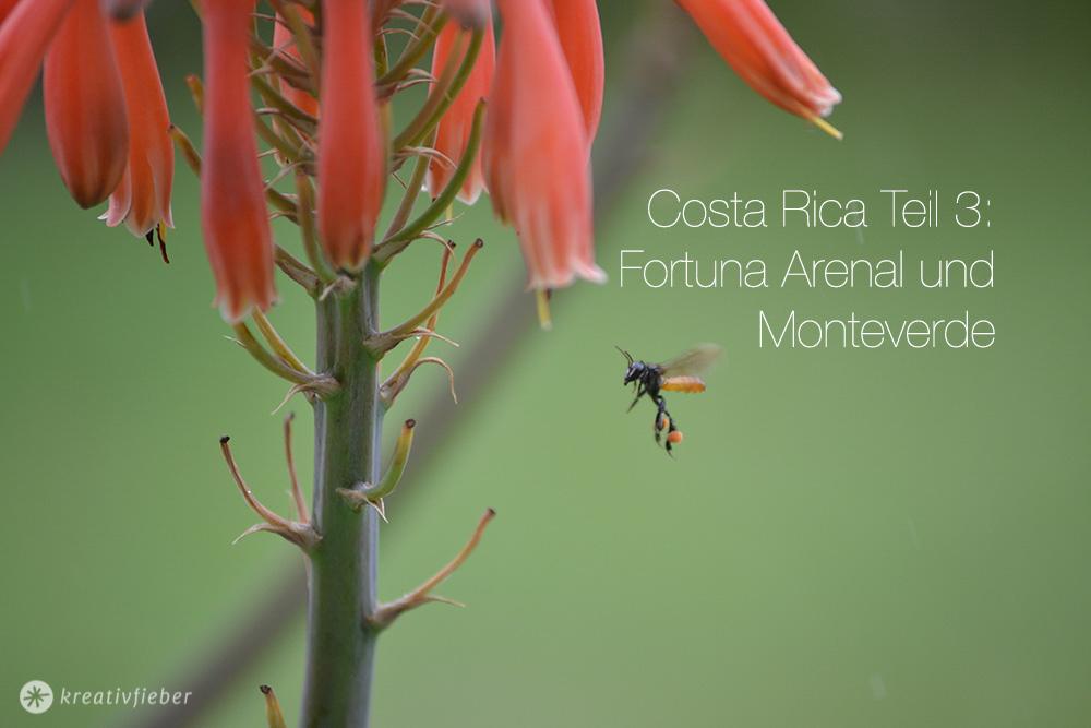 fortuna arenal und monteverde erisebericht