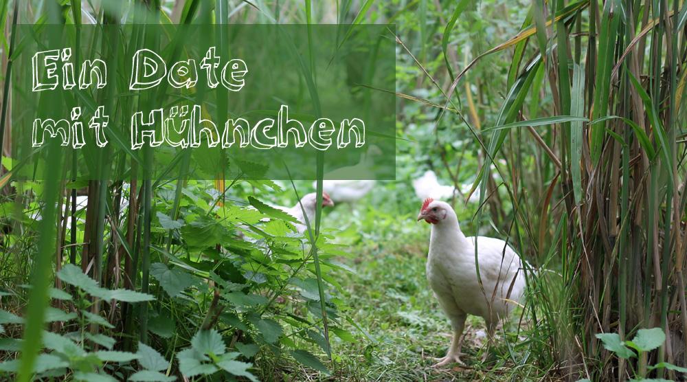 Ein Date mit Hühnchen Rewe Bio