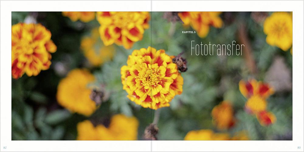 Foto Wohnsinn Fototransfer DIY Buch