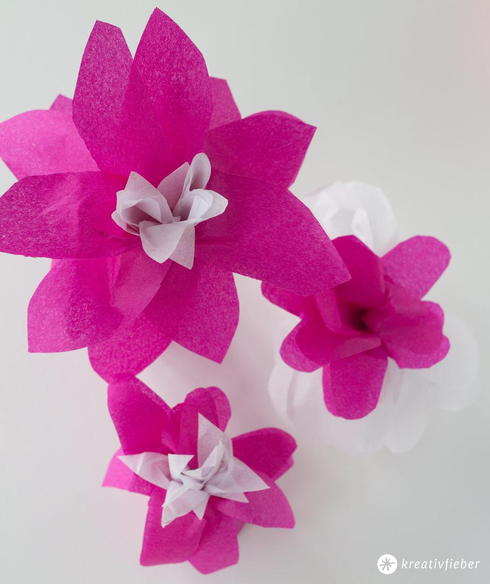 Blüten-Geschenkverpackungen-aus-Seidenpapier-und-Klopapierrollen