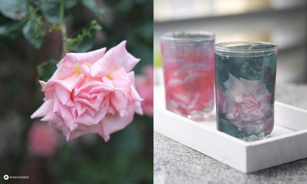 Fototransfer-auf-Glas---die-besten-Tipps-und-Tricks-inklusive-Videotutorial---DIY-Anleitung