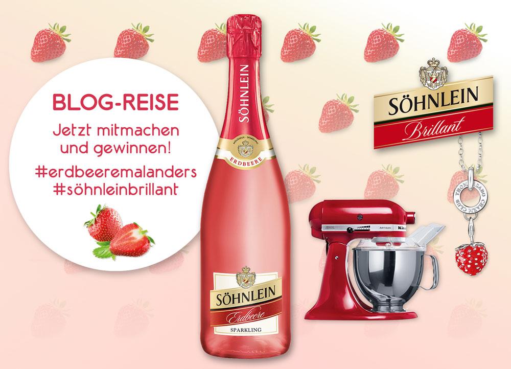 Söhnlein-Erdbeere_Gewinnspiel-Grafik_erdbeeremalanders