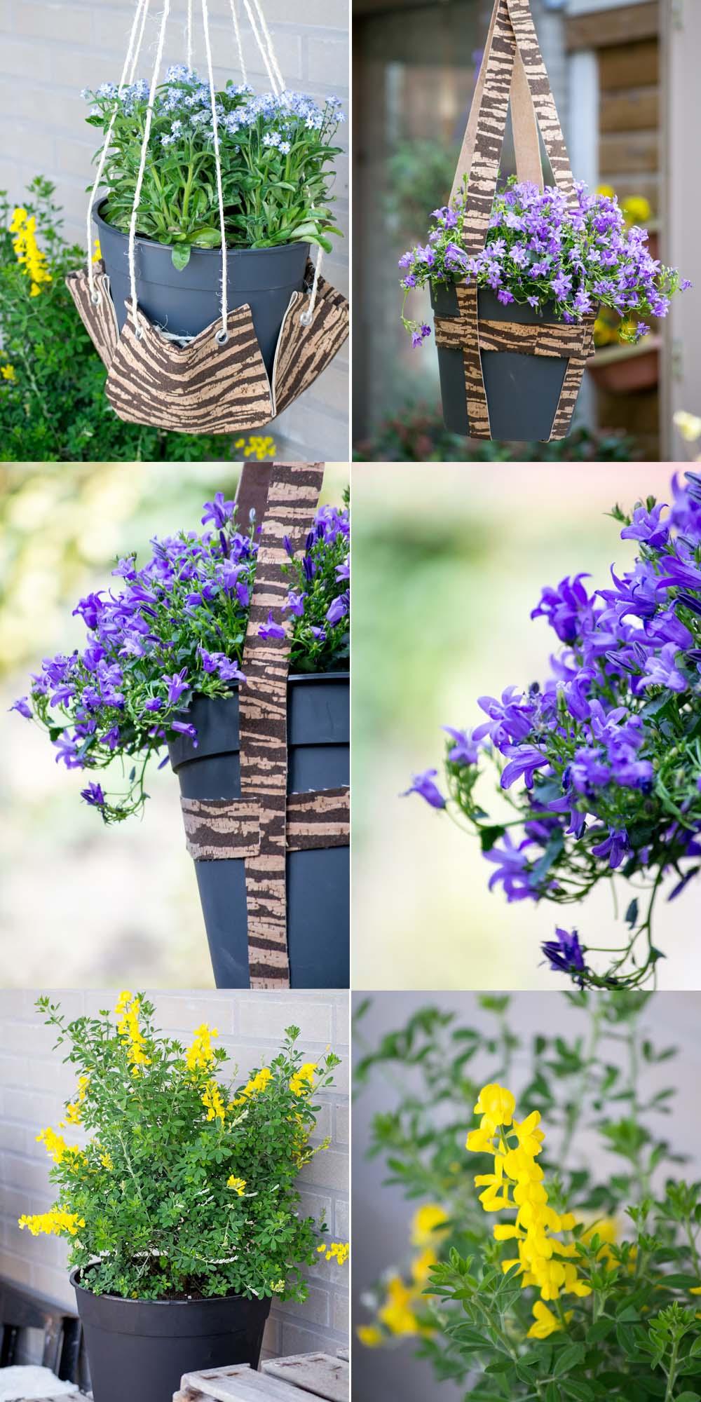Aufhängung für Pflanzen DIY Kork
