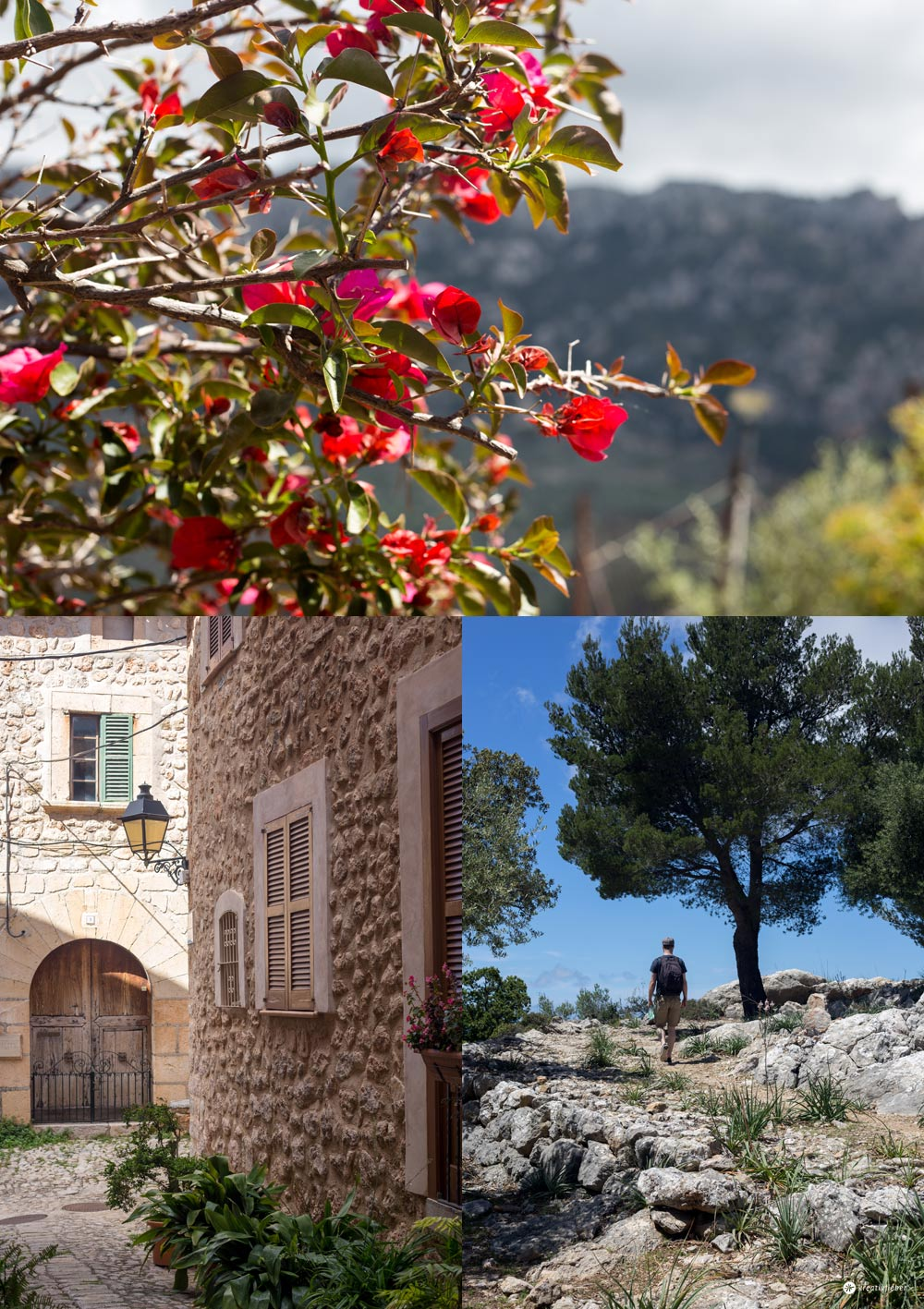 7 Tipps für Fornalutx auf Mallorca - schöne Landschaften