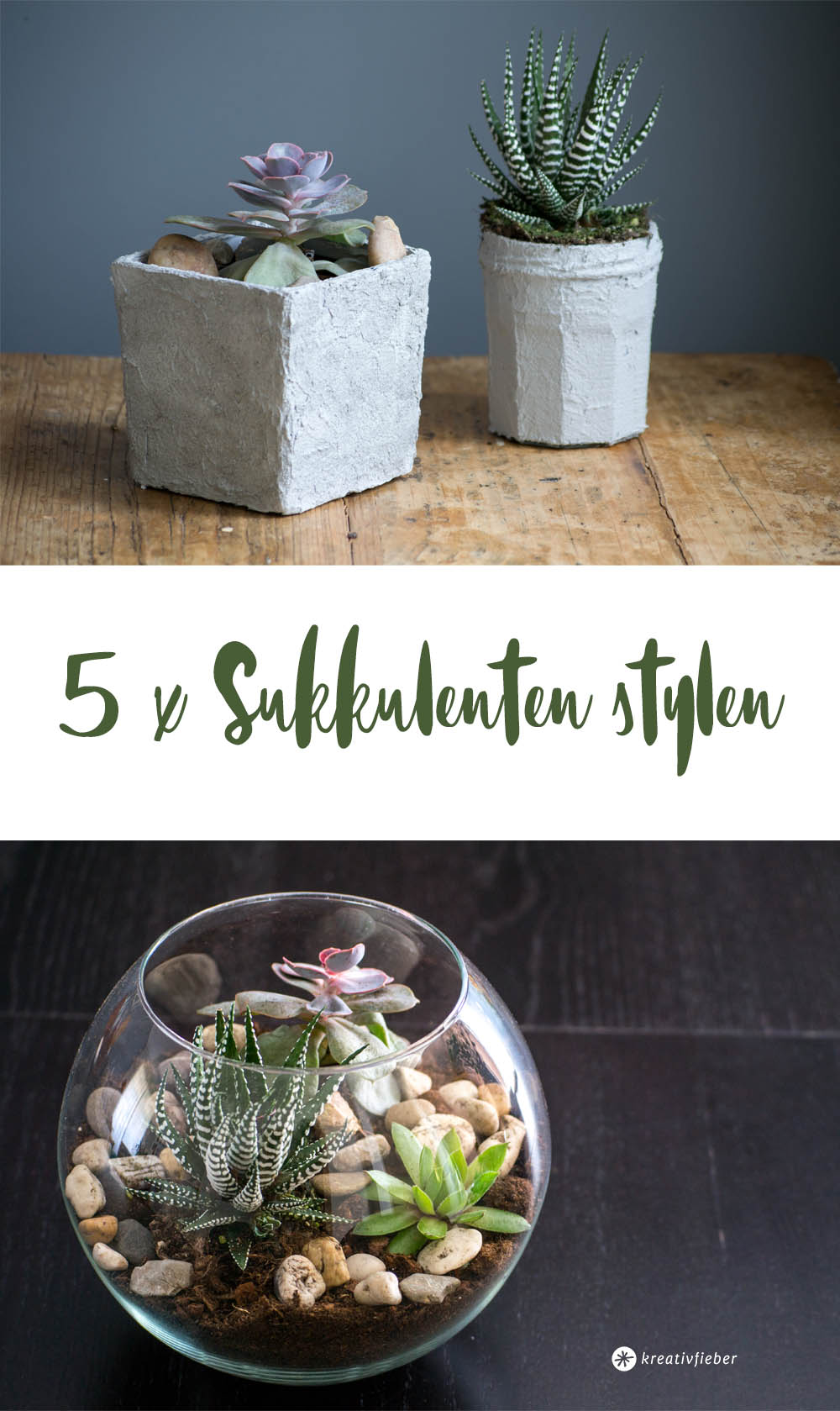 diy 5 arten um sukkulenten und kakteen zu stylen. Black Bedroom Furniture Sets. Home Design Ideas