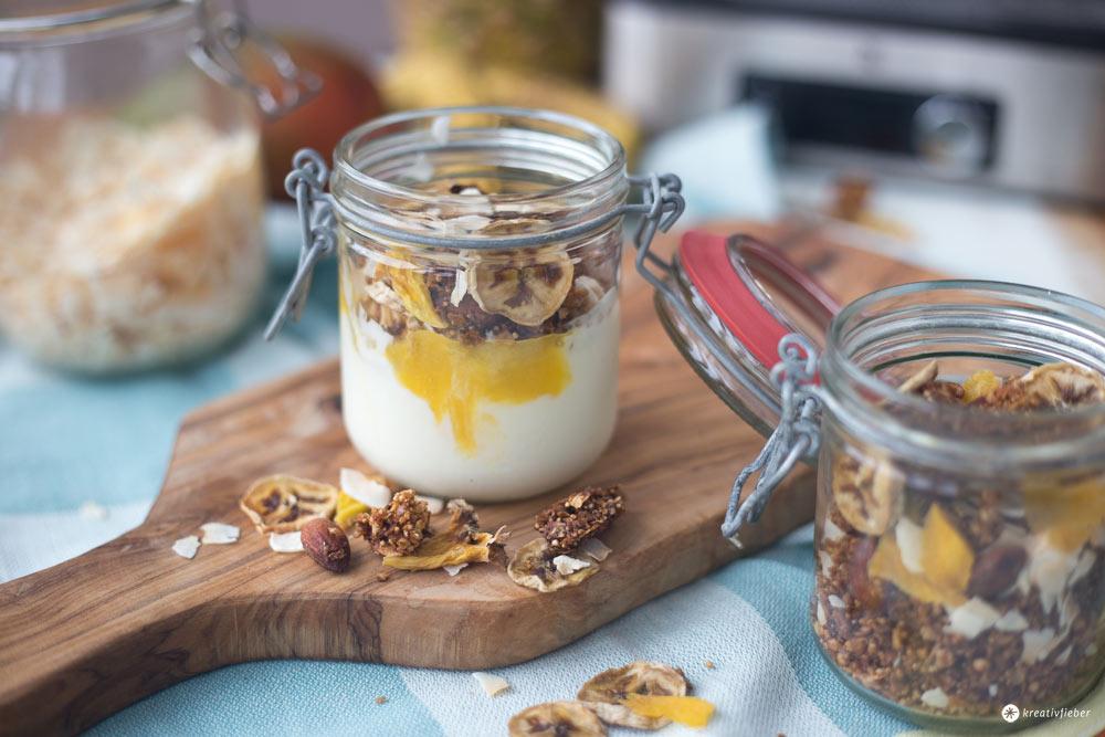Tropical Granola mit Dörrobst - leckeres Frühstücksrezept - Granola selbermachen
