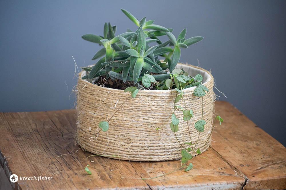 DIY Übertopf für Pflanzen Korb