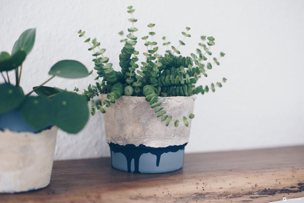 DIY Blumentöpfe mit Steinoptik selbermachen - Upcycling Ideen - DIY Tutorial - DIY Deko Kreativfieber - Pilea und Hottentotten Pflanze