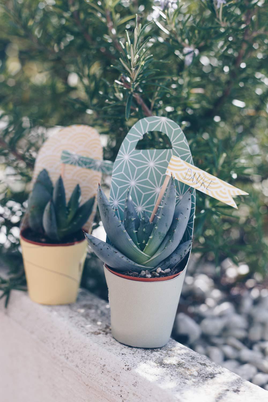Kleines Dankeschön selbermachen - DIY kleine Pflanzen oder Ableger schön verpacken und verschenken