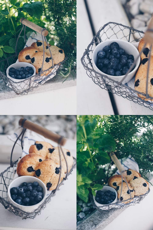 Zitronen-Cookies mit Blaubeeren backen - lecker für ein Sommer Picknick - einfaches Keksrezept
