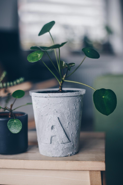 DIY Blumentopf in Betonoptik mit Buchstaben - einfaches DIY Upcycling Tutorial