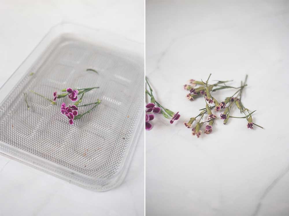 Blumen trocknen im Backofen