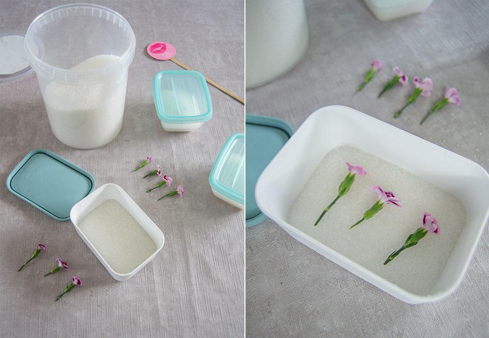 Blüten konservieren in Trockensalz
