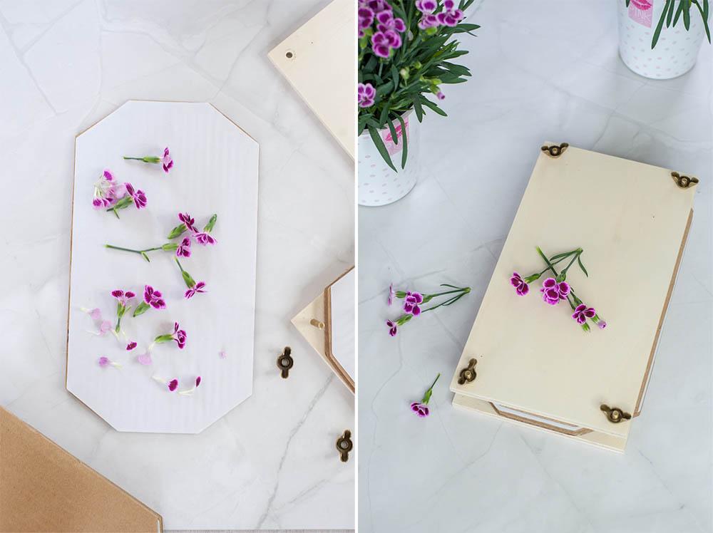 Blumen pressen mit der Blumenpresse