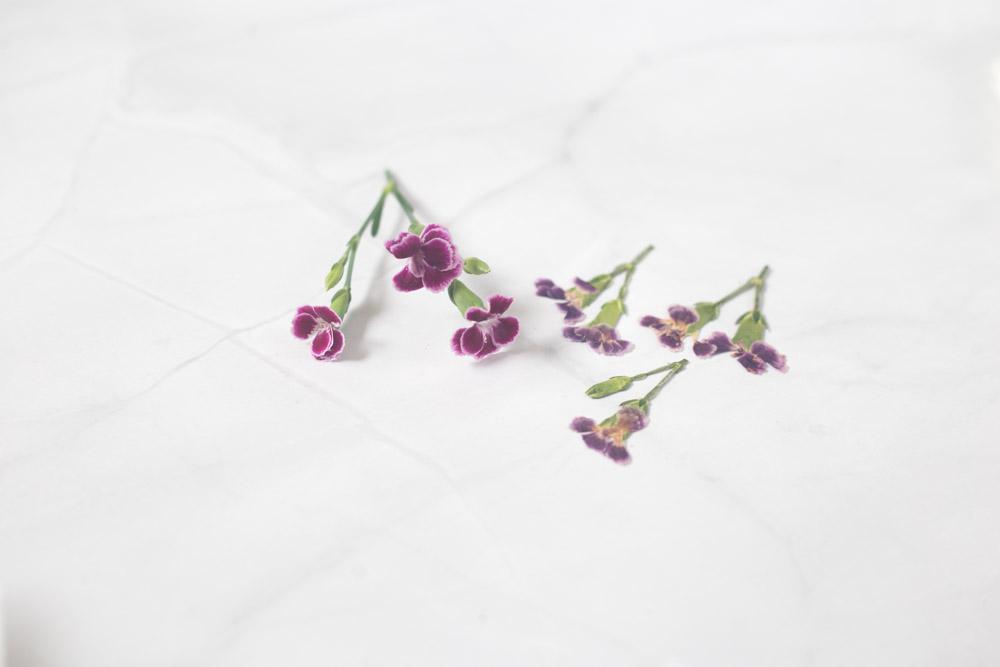 Blumen trocknen in der Mikrowelle