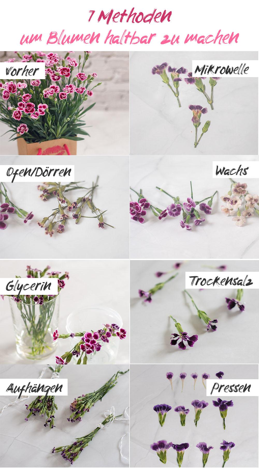 7 Methoden zum Konservieren von Blumen getestet