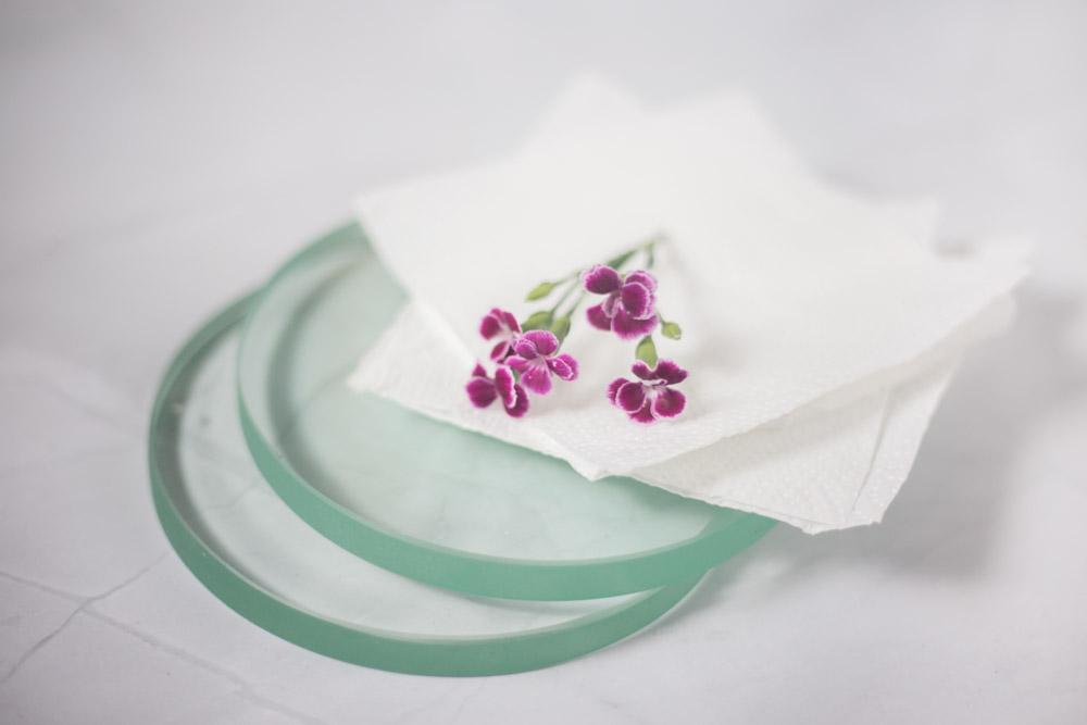 Blumen haltbar machen in der Mikrowelle