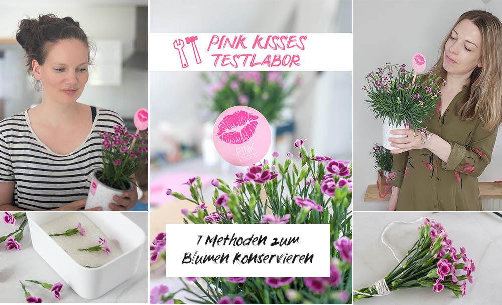 Pink kisses Testlabor Blumen konservieren
