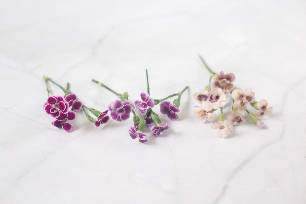 Blumen mit Wachs konservieren