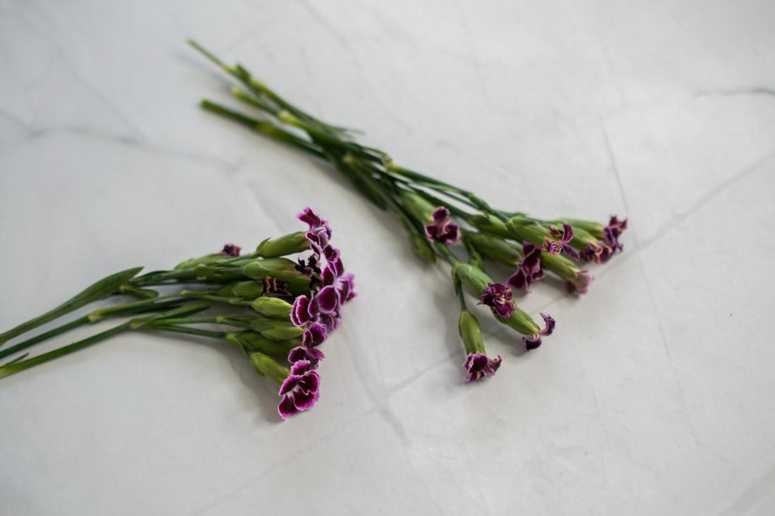 Blumen konservieren mit Glycerin